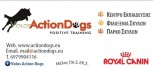 Volos Action Dogs